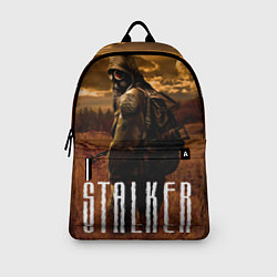 Рюкзак STALKER: Radiation цвета 3D — фото 2