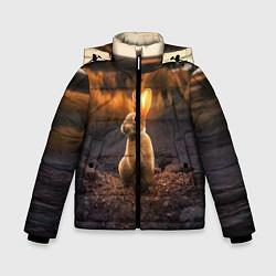 Детская зимняя куртка для мальчика с принтом Солнечный зайчик, цвет: 3D-черный, артикул: 10164198706063 — фото 1