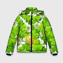 Куртка зимняя для мальчика Ирландский Клевер и Монетка цвета 3D-черный — фото 1