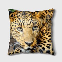 Подушка квадратная Улыбка леопарда цвета 3D-принт — фото 1
