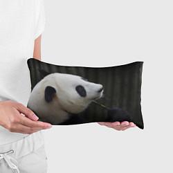 Подушка-антистресс Панда с веткой цвета 3D — фото 2