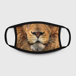 Маска для лица Красавец лев цвета 3D-принт — фото 2