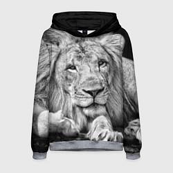Толстовка-худи мужская Милый лев цвета 3D-меланж — фото 1