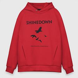 Толстовка оверсайз мужская Shinedown: Sound of Madness цвета красный — фото 1