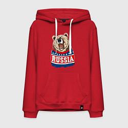 Толстовка-худи хлопковая мужская Made in Russia: медведь цвета красный — фото 1