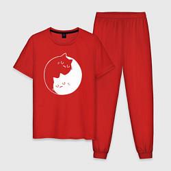 Пижама хлопковая мужская Котики Инь Янь цвета красный — фото 1
