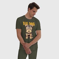 Пижама хлопковая мужская Большой пёс цвета меланж-хаки — фото 2