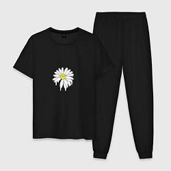 Пижама хлопковая мужская Ромашка цвета черный — фото 1