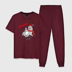 Пижама хлопковая мужская Cat цвета меланж-бордовый — фото 1