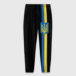 Брюки на резинке мужские Украина цвета 3D-принт — фото 1