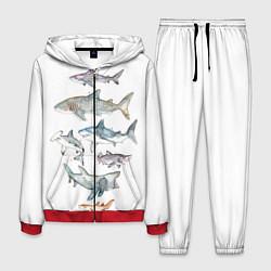 Костюм мужской Акулы цвета 3D-красный — фото 1