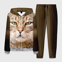 Костюм мужской Взгляд кошки цвета 3D-меланж — фото 1