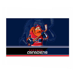 Бумага для упаковки Montreal Canadiens цвета 3D — фото 1
