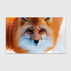 Бумага для упаковки Взгляд лисы цвета 3D — фото 1