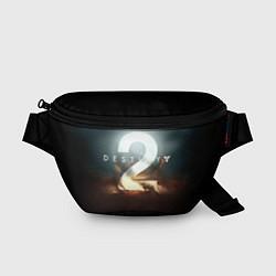 Поясная сумка Destiny 2 цвета 3D-принт — фото 1