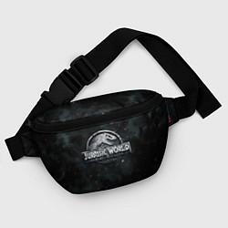 Поясная сумка Jurassic World: Smoke & Ash цвета 3D — фото 2