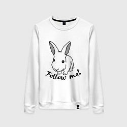 Свитшот хлопковый женский Rabbit: follow me цвета белый — фото 1